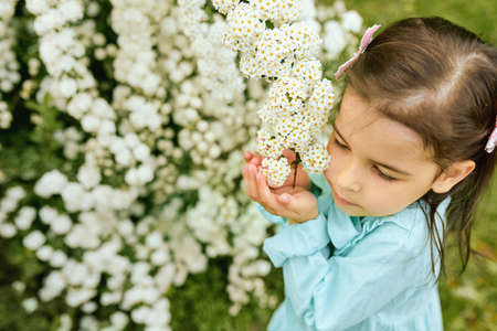 Pretty child sniffing the white flowers in the city park. Beautiful little girl wearing light blue dress, exploring and enjoying the summer time at the nature. Mothers day