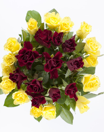 isolated on yellow: Arrangement with red and yellow roses