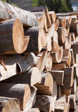 wood cut: Stack of cut wood