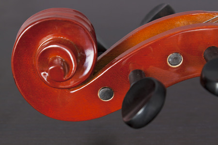 body image: Violin Body Image