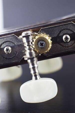 Guitar peg closeup