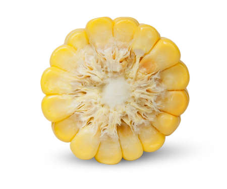 yellow corn: Piece of corn cob an end view isolated on white background