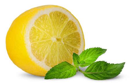 Half lemon and sprig of mint Reklamní fotografie