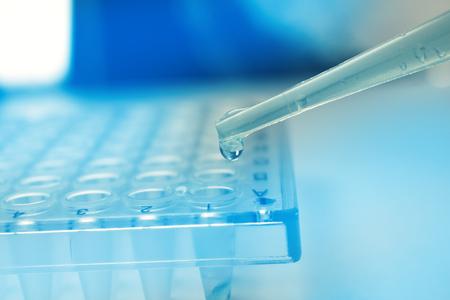 Pipeter le liquide de recherche des cellules souches sur la plaque pcr. Dropper médical Banque d'images - 81854522