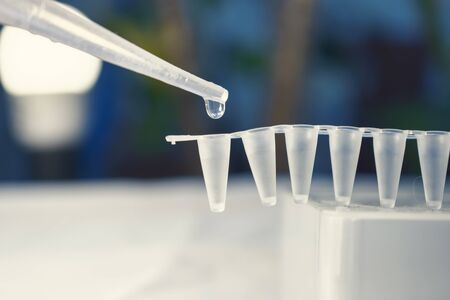 pcr: Stem Cell Research with Pipette and vials