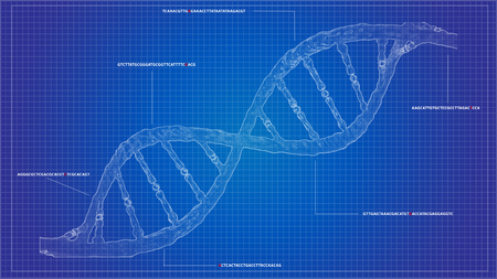 DNA sequencing blueprint RNA sequencing DNA computational models, genome helix background, gene CRISPR helix Stock Photo