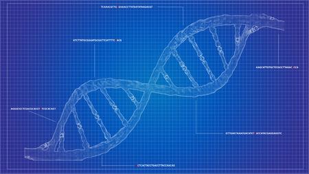 DNA-Sequenzierung Blueprint-RNA-Sequenzierung DNA-Rechenmodelle, Hintergrund der Genomhelix, CRISPR-Helix Standard-Bild - 88792677