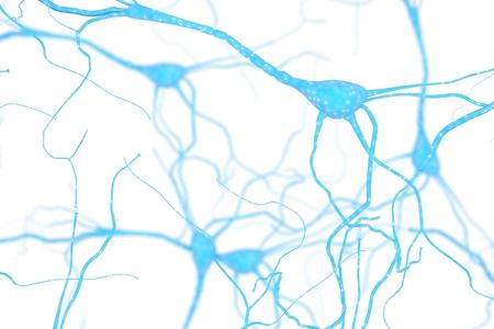 Neuron Cell, Neurons on white background, single neuron cell in human brain 3d rendering Standard-Bild