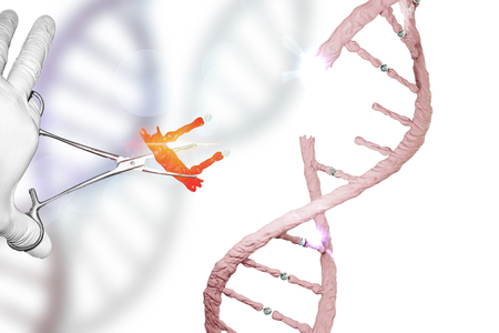 Gene Editing Gene Therapy Genome Editing DNA manipulation DNA editing gloved hand holding forceps in genes research concept