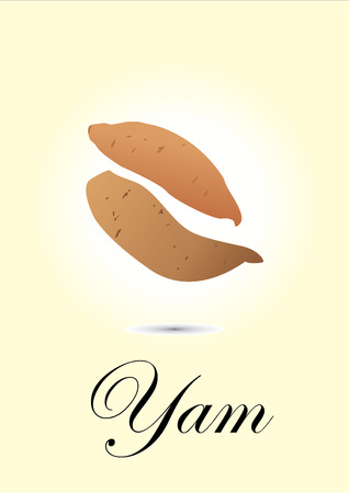 yam: Yam chart vector illustration Illustration