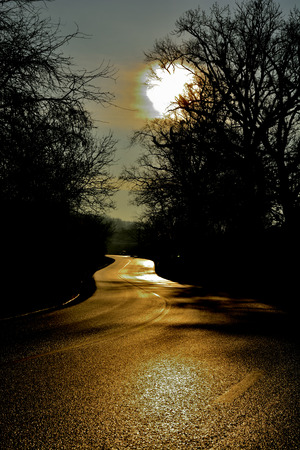 guided: dark road at night guided by moonlight