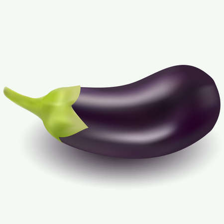 Realistic vector illustration of eggplant on white background