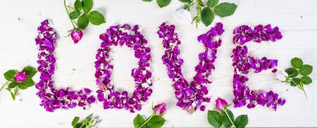 Word Love made of purple rose petals on white background