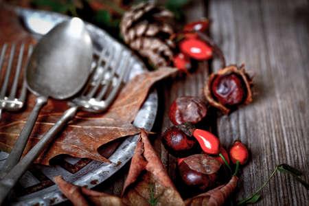 vintage leaf: Thanksgiving Place Setting with fallen leaves