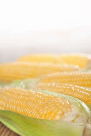 sweetcorn: sweetcorn cob  close up