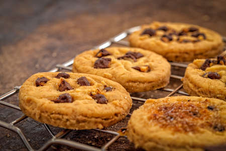 chocolate chip cookies: Chocolate chip cookies - close up