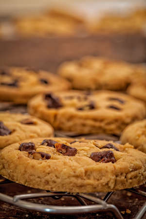 chocolate chip cookies: Homemade Chocolate Chip Cookies