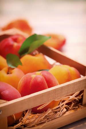 apricots: Healthy Apricots Stock Photo