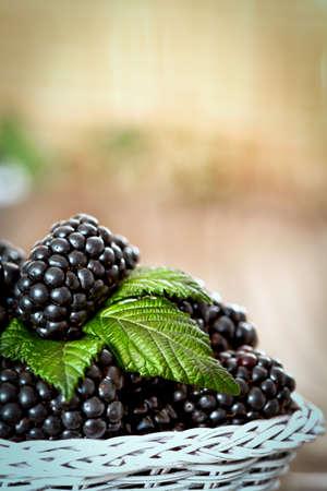 blackberry: Blackberry with leaves