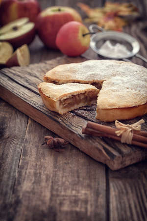 apple tart: Homemade Apple tart with cinnamon and copy space