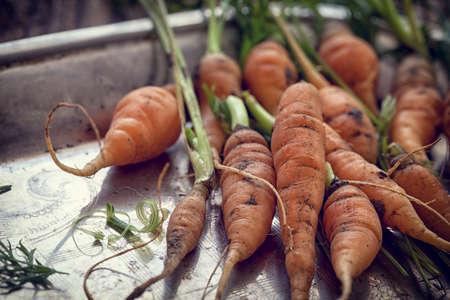 Organic carrots on wooden background Reklamní fotografie