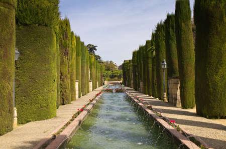 Garden of the Alcazar de los Reyes Cristianos, Cordoba, Andalusia, Spain photo