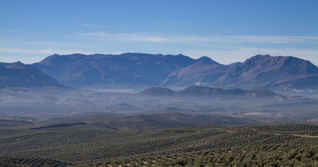 sierra: Panorama of Sierra Cazorla with Olive trees, Andalusia, Spain Stock Photo