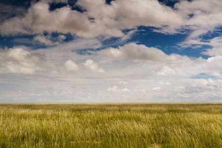 Endless plains of Etosha National Park during the wet season, Namibia, Africa Stock Photo - 28137544