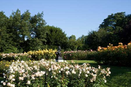 regent: Rose Garden at Regent