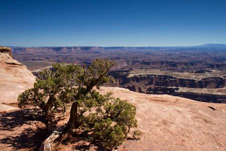 グランド ビュー ポイント、キャニオンランズ国立公園、ユタ州、アメリカ合衆国