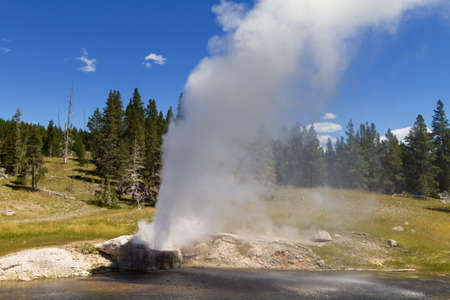 volcanism: Eruption of Riverside Geyser, Yellowstone National Park, Wyoming, USA