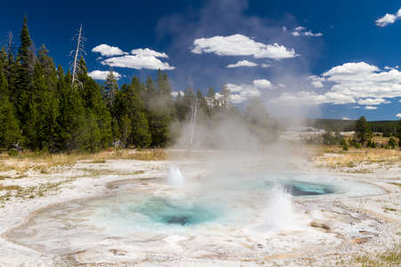 volcanism: Spasmodic Geyser at upper geyser basin, Yellowstone National Park, Wyoming, USA