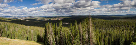 volcanism: Panorama of the Yellowstone National Park as seen from the Dunraven Pass, Wyoming, USA