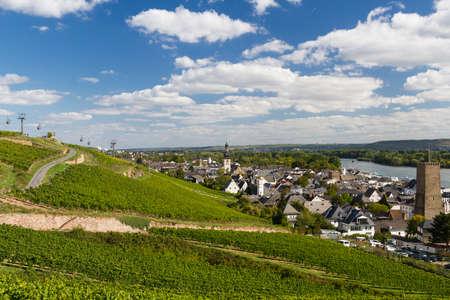 hessen: Panorama of Ruedesheim am Rhein in the vineyards, Hessen, Germany Stock Photo
