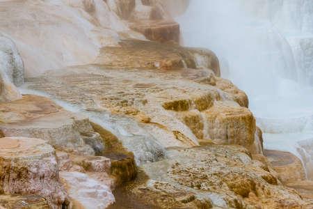 パレット春、イエローストーン国立公園ワイオミング州のクローズ アップ 写真素材