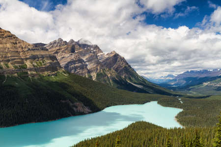 Vista over Peyto Lake, Icefields Parkway, Alberta, Canada