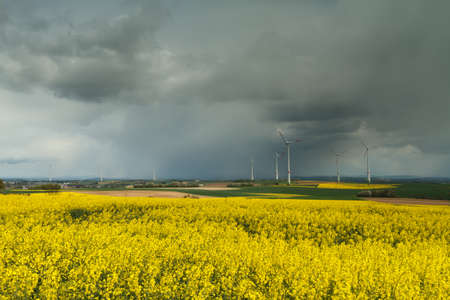 Dark clouds over a canola field withwind turbines, Wetterau, Hessen, Germany Stock Photo