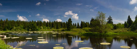 hessen: Marsh and pond at the Vogelsberg mountain range, Hessen, Germany Stock Photo