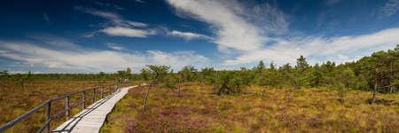 moor: Panorama Schwarzes Moor, Rhoen, Hesse, Germany