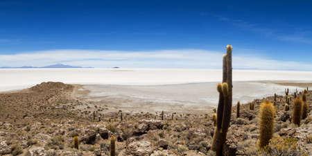 Panorama of Salar de Uyuni from Isla Pia Pia, Altiplano, Bolivia