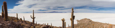incahuasi: Panorama of Salar de Uyuni as seen from Isla Incahuasi, Bolivia