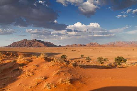 ソーサス フライ、ナミビア、アフリカでオレンジ エリム砂丘