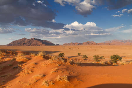Oranje Elim-duin in Sossusvlei, Namibië, Afrika