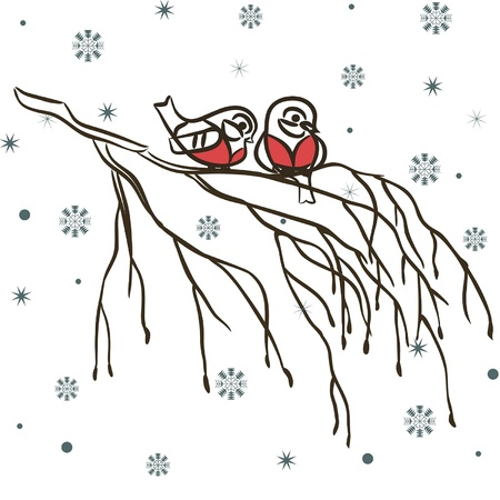 robin bird: Winter birds on branch and snowflakes