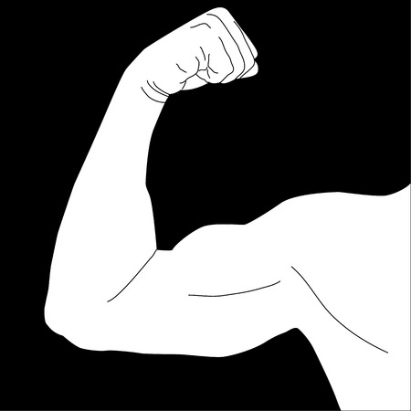 arm muscles: Mans arm muscles Illustration