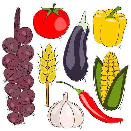 Surtido ilustraci�n vectorial vegetal. Bosquejo gr�fico de la mano
