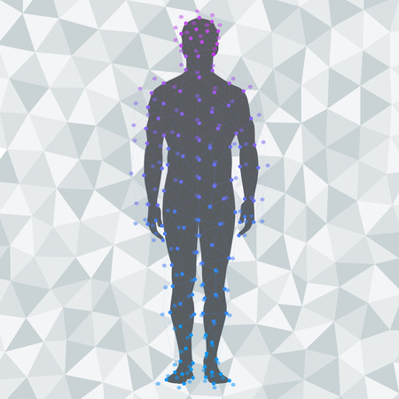 body silhouette: Abstract model of man on poly background. Vector background