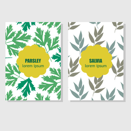 Concept for packing design with aromatic herbs and spices Vector