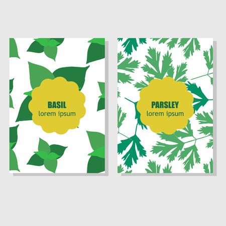 Concepto de dise�o de embalaje con hierbas arom�ticas y especias
