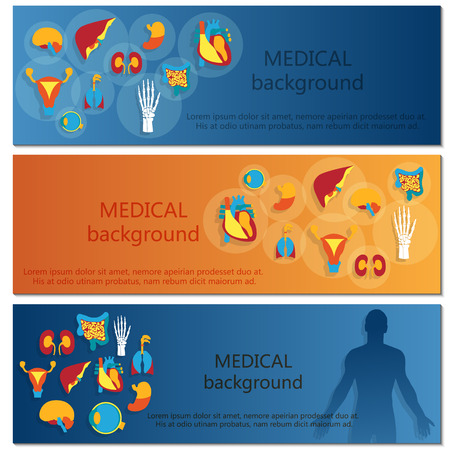 Concept of web banner. Medical background.Human anatomy.